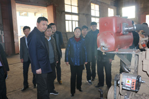 新乡县县政府领导考察我厂生产状况
